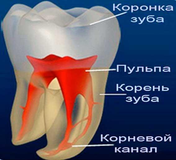 Чувствительность живого зуба под коронкой 105