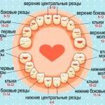 Появление первых зубов у малышей