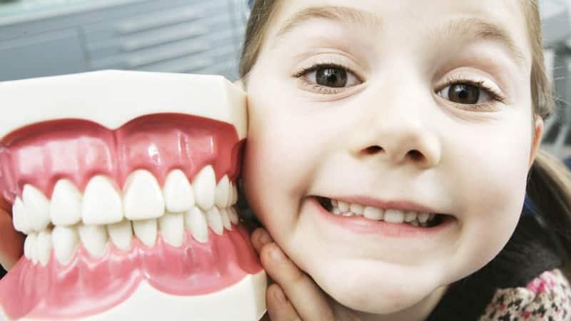как быстро вырвать молочный зуб у ребенка коренной без боли дома в домашних условиях