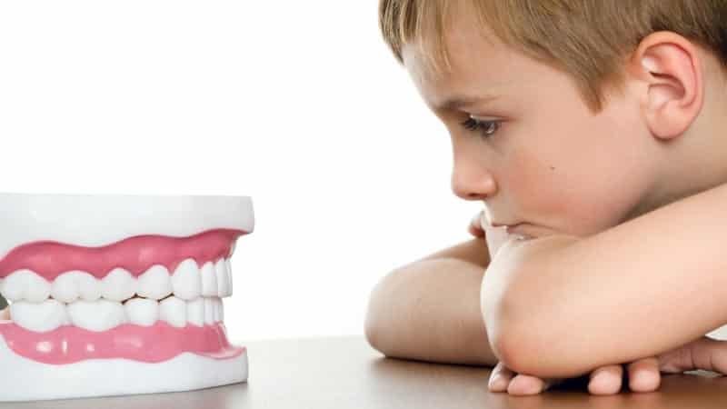 сколько зубов должно быть у ребенка в 3 4 года