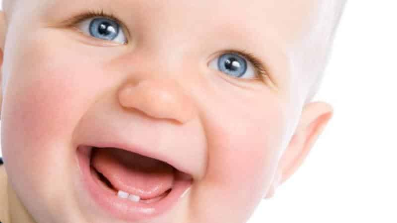 молочные зубы у детей количество