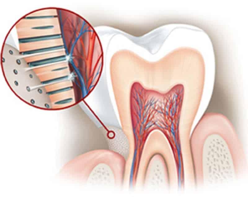 Почему зуб реагирует на холодное