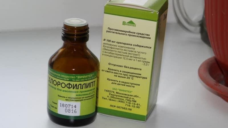 препараты для лечения тонзиллита у взрослых