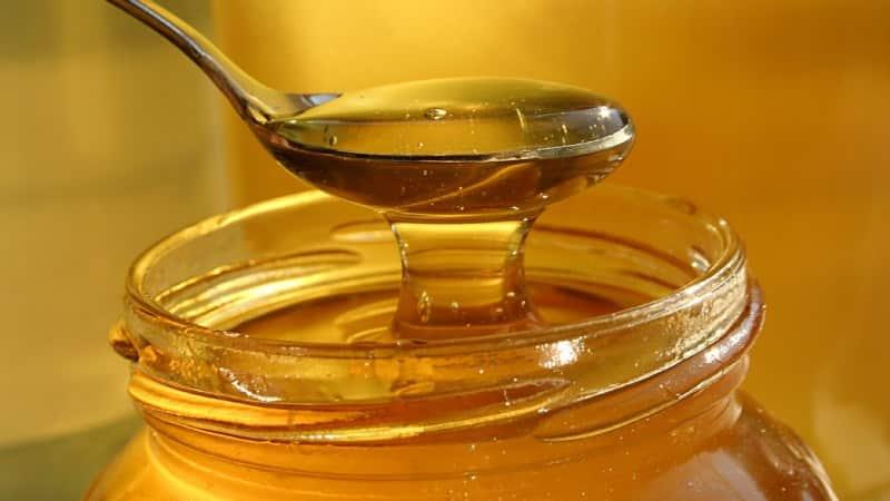 мед и стоматит