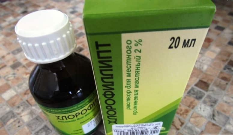 хлорофиллипт при стоматите у детей отзывы