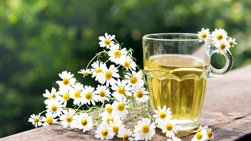 чай на травах для похудения