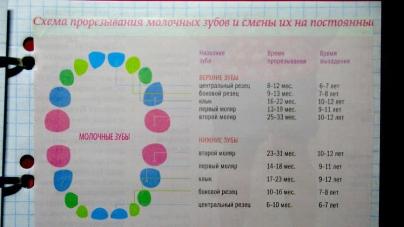 сыпь у ребенка на зубы лечение